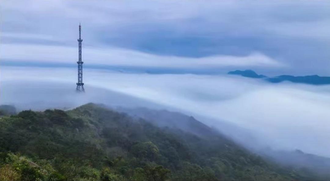 北峰山国家森林公园森氧Villa带您进入森氧世界。